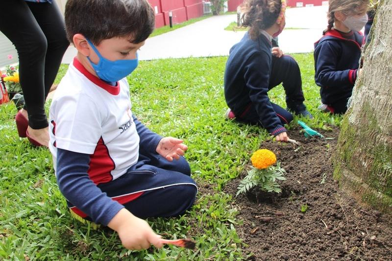 Inspirados por Monet, Infantil III planta flores em jardim