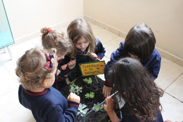 Infantil III - Conhecendo os elementos naturais