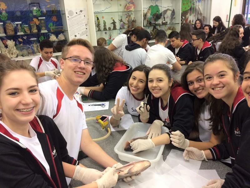 Aula  prática no Laboratório de Biologia