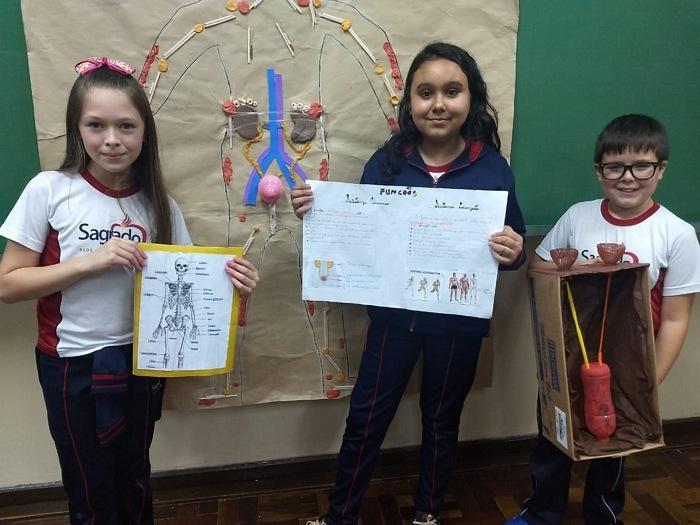 5º anos do Imaculada constroem protótipos para representar Sistemas do Corpo Humano