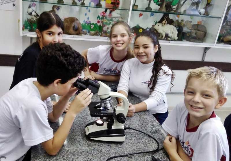 Educandos do 7º ano confeccionam lâminas de células animais e vegetais