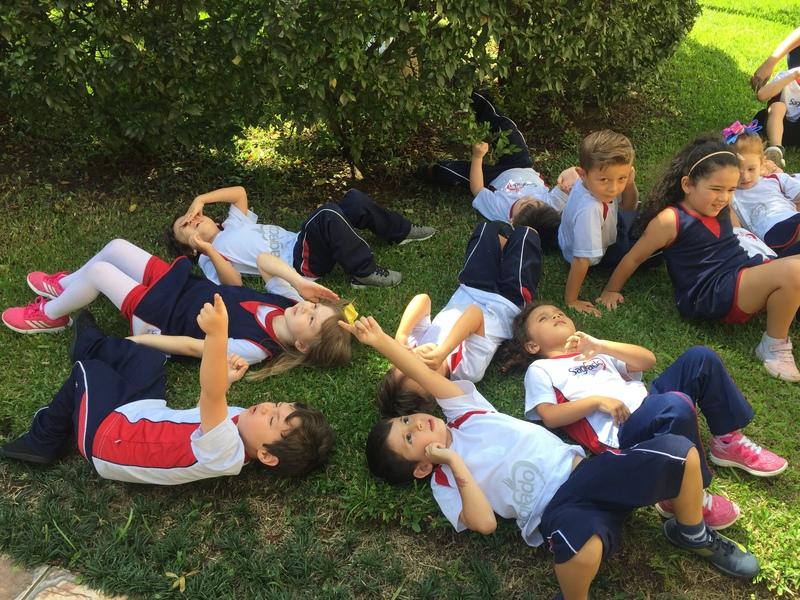 Interpretação e vivência das artes na Educação Infantil