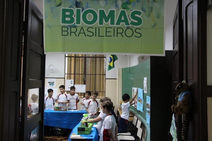 """Um show de criatividade com os """"Biomas do Brasil"""""""