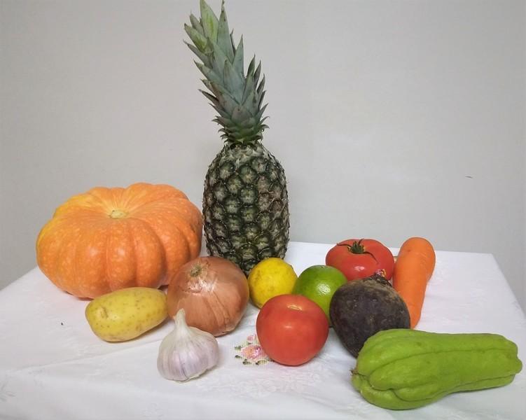 A origem dos alimentos