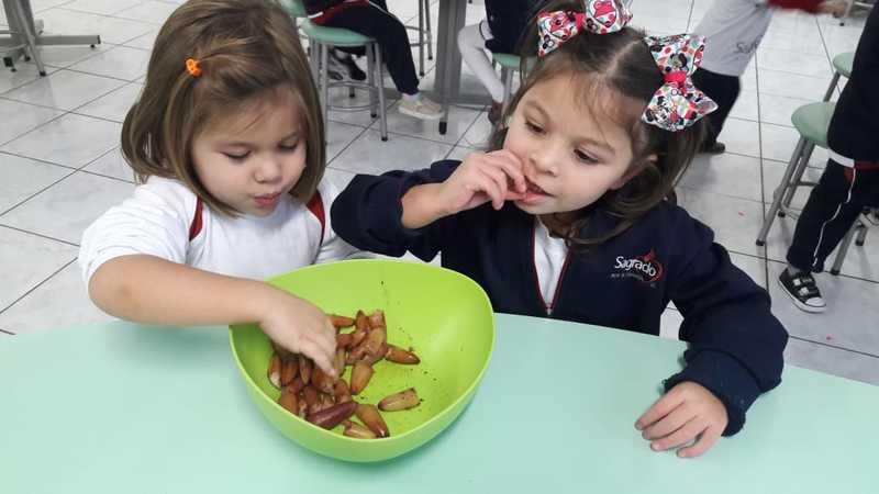 Turma do Infantil III tem aula sobre cultura paranaense e se delicia com pinhão