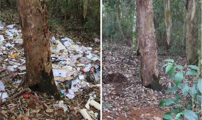 Educandos do Imaculada recolhem mais de 15 sacos de lixo em terreno próximo ao Colégio