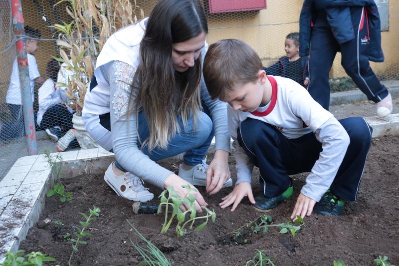 Flora Brasileira - Infantil V