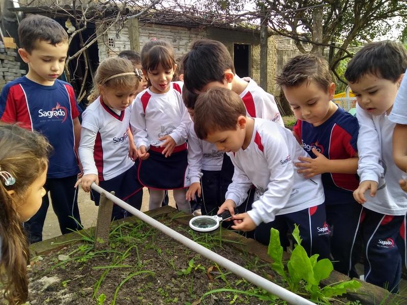 2019 um ano de aprendizado e alegrias para a Educação Infantil III