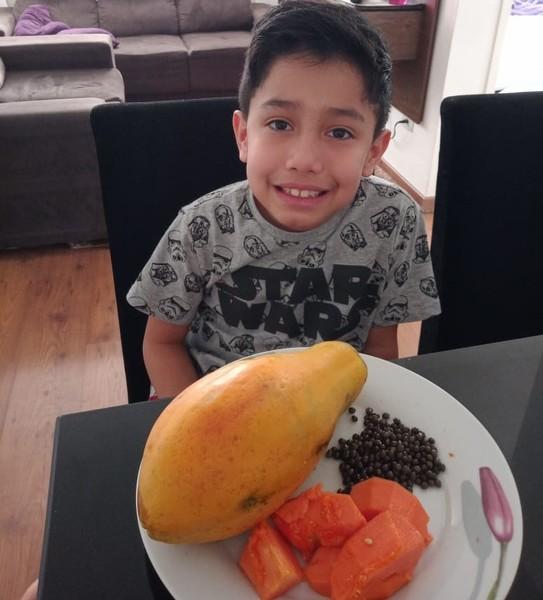 #SagradoEmCasa - Como se reproduzem as plantas? Educandos do 3º ano 2 aprendem de forma divertida e saborosa