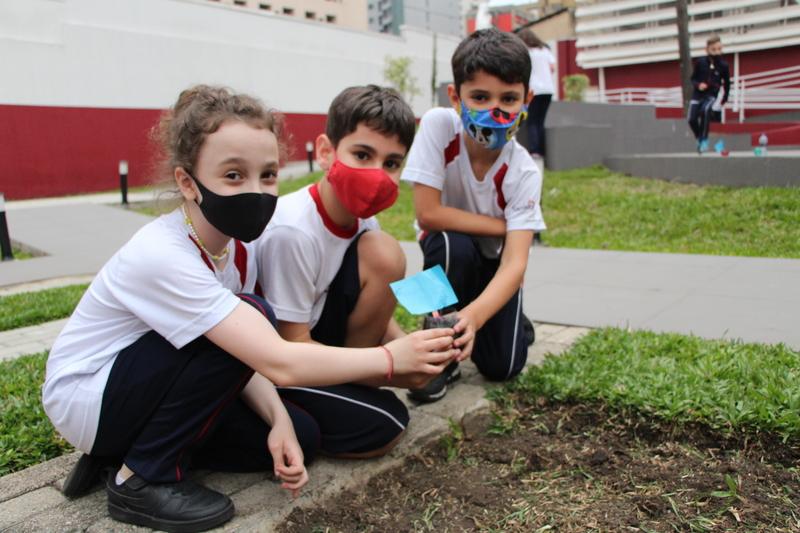 3º ano 1 acompanha o desenvolvimento das etapas de cultivo