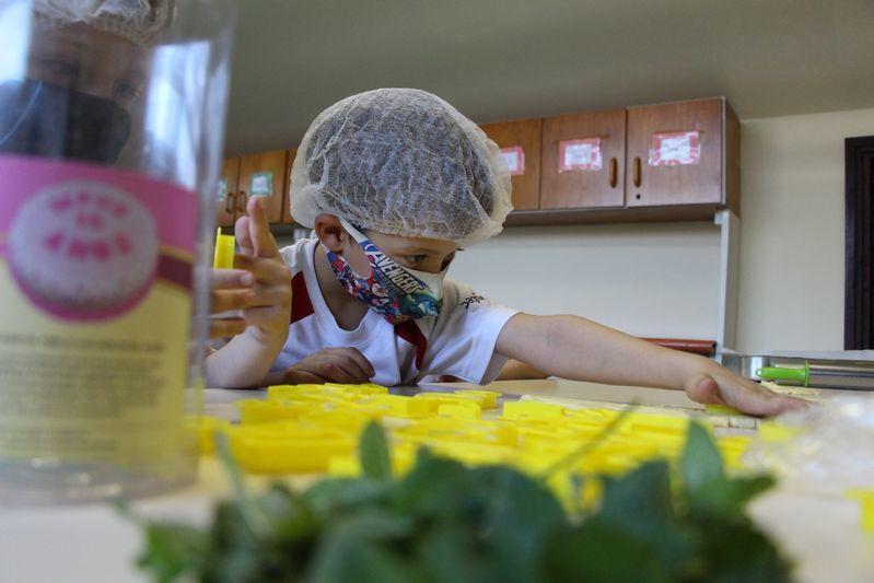 Infantil V e as Plantas Medicinais